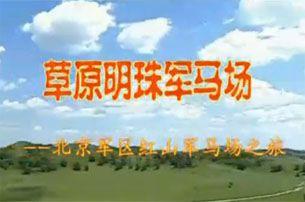 视频: 木兰围场坝上红山军马场宣传片