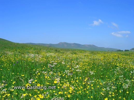 京北第一草原 即丰宁坝上草原