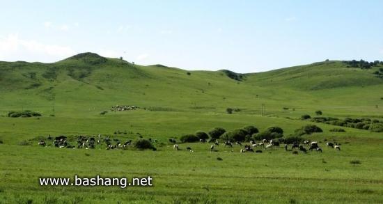 蛇山-御道口牧场
