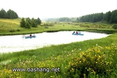 泰丰湖-塞罕坝国家森林公园