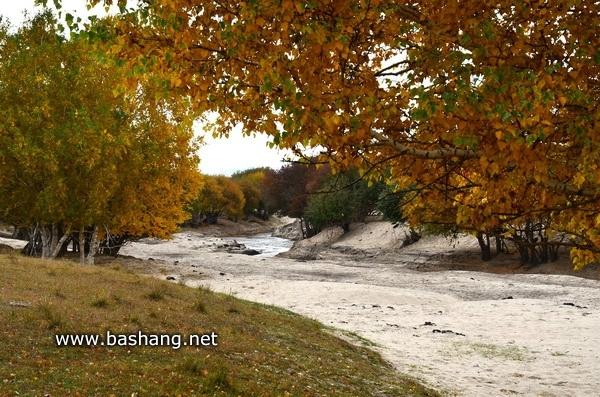 坝上秋季摄影纪实