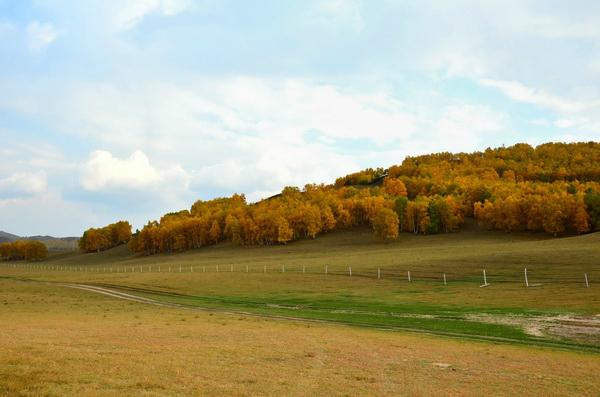 木兰围场坝上草原二日游天天发