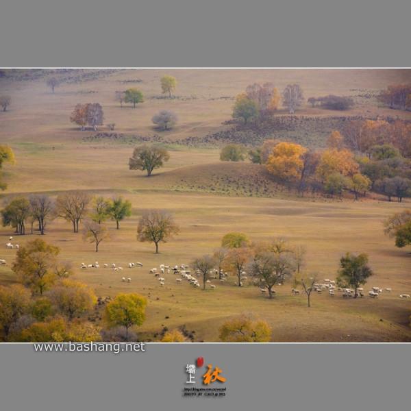 【坝上行摄思语】——2013坝上秋色摄影采风