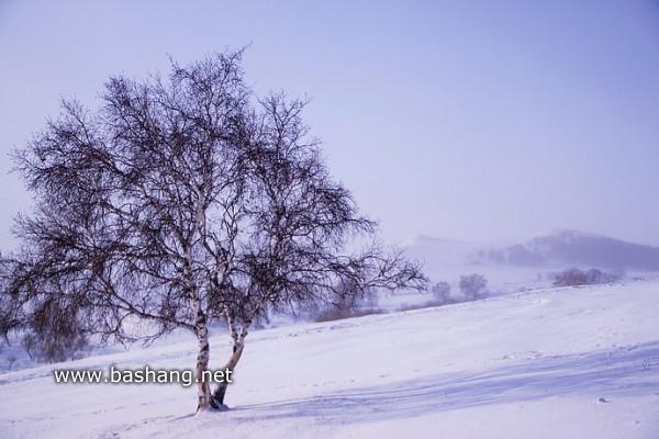 木兰围场图片
