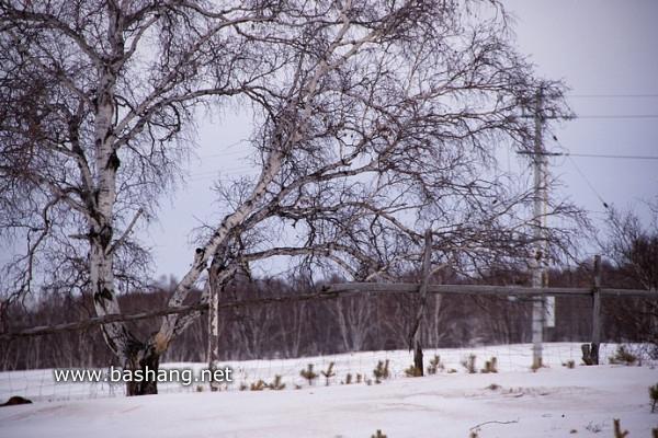 木兰围场旅游攻略图片