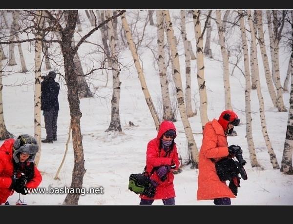 木兰围场自助游图片