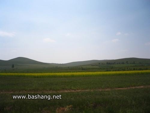 坝上草原2日游