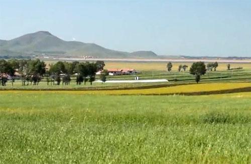 视频: 《张北坝上风光》