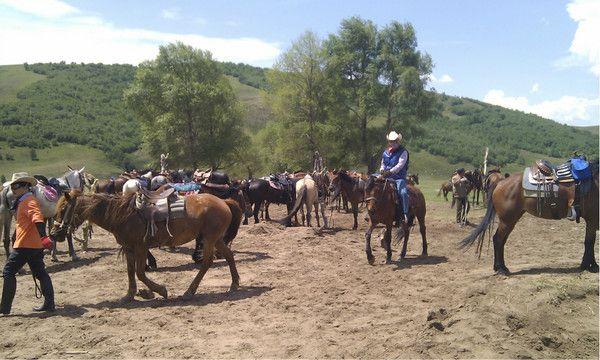 6月丰宁坝上骑马