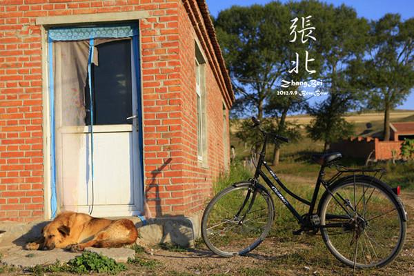 张北自助游图片