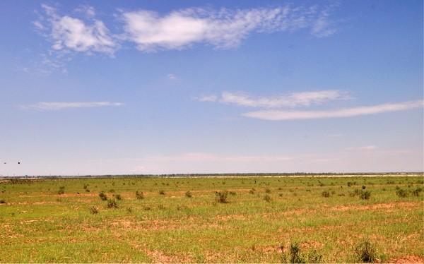 避暑中都草原