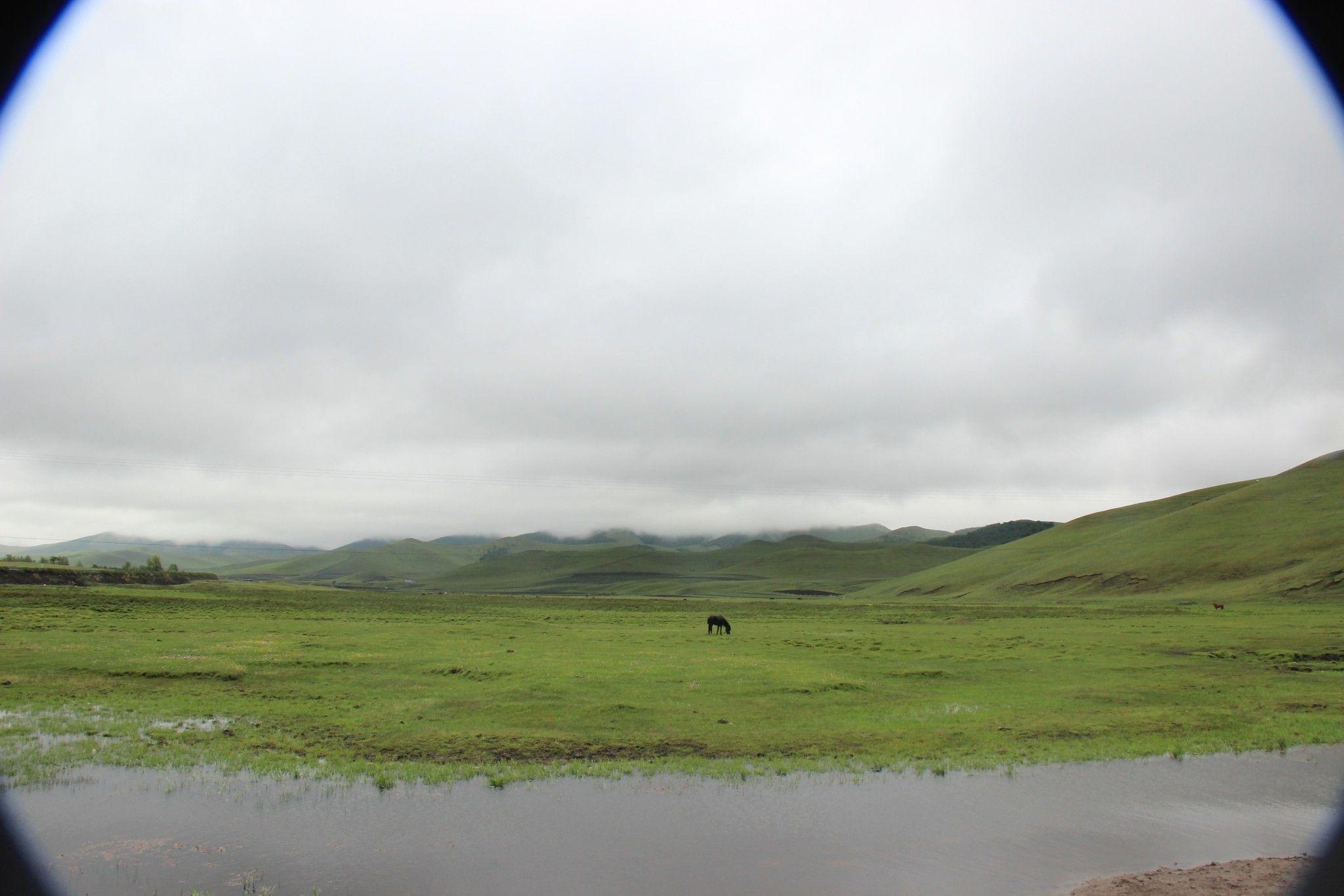 (丰宁坝上)去草原,吹吹风~