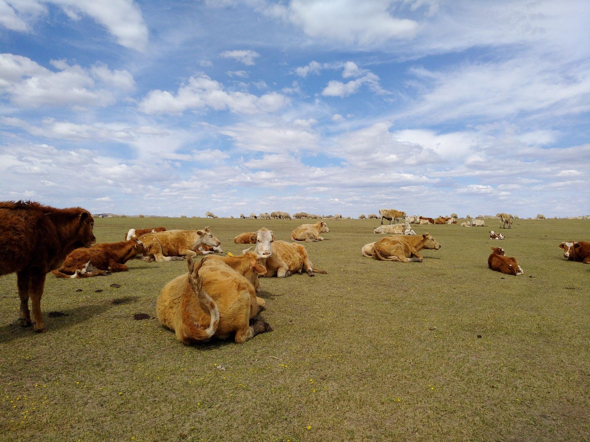 2017木兰围场美景不断更新,手机拍摄。