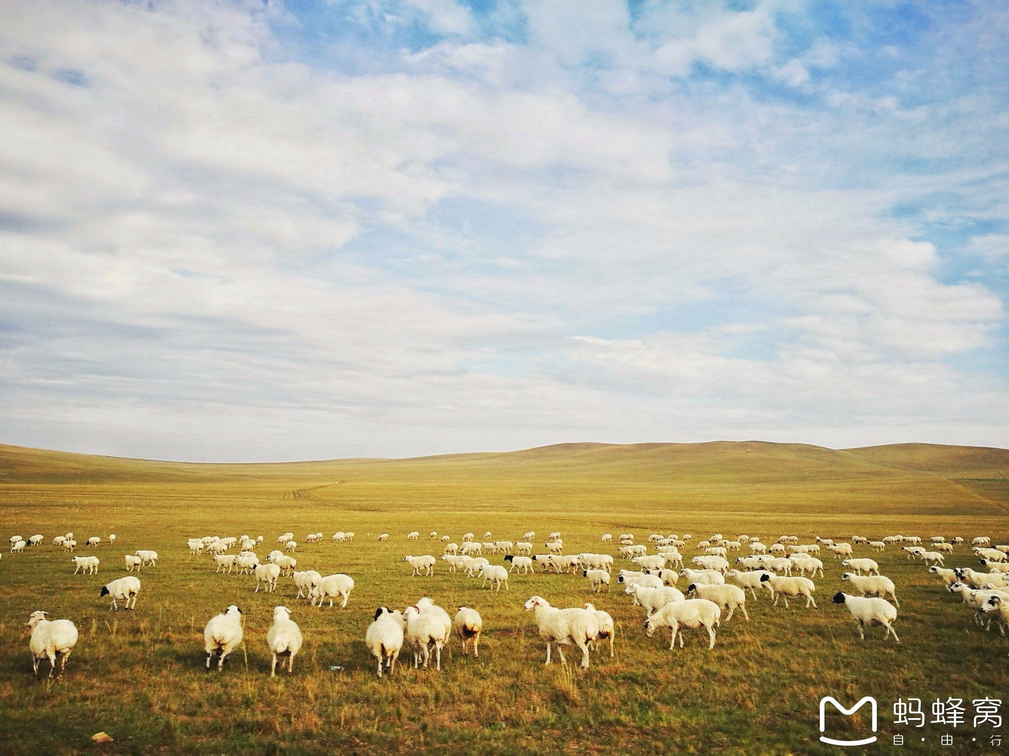 内蒙古旅游攻略