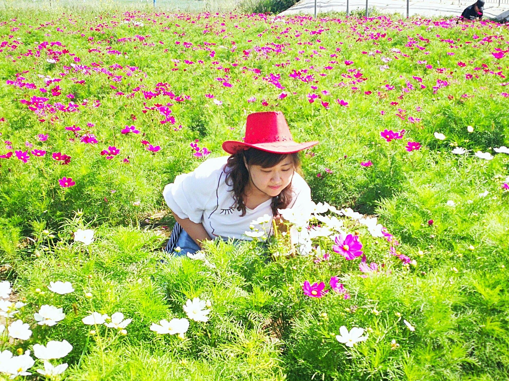 丰宁坝上草原,丰宁京北草原