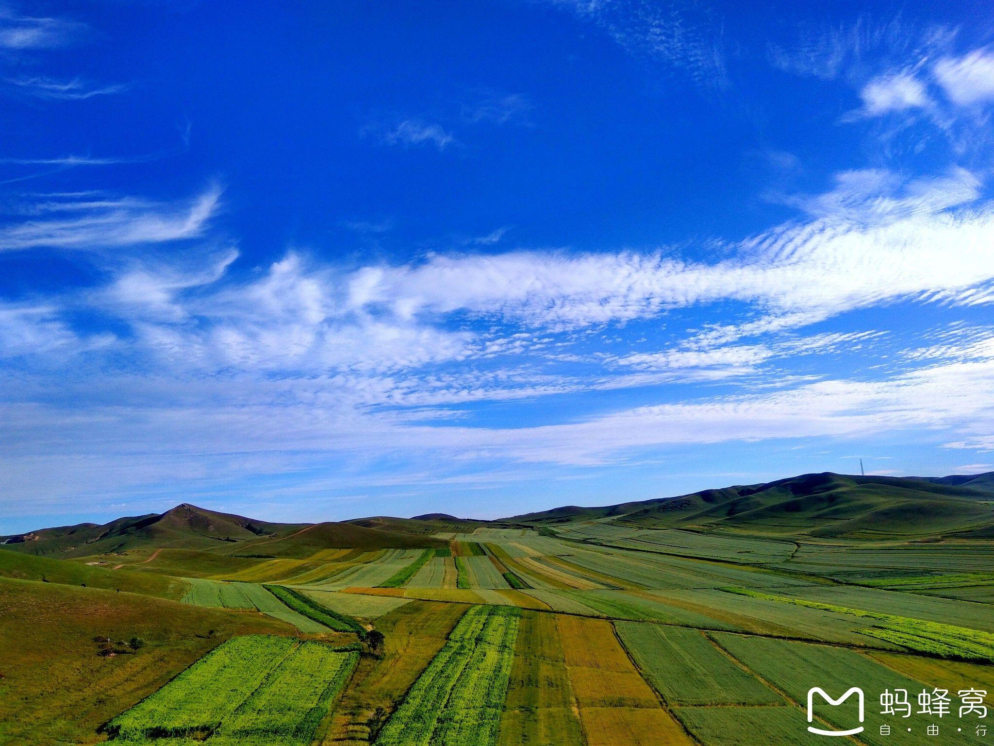 酷暑难耐,撒欢草原--丰宁坝上